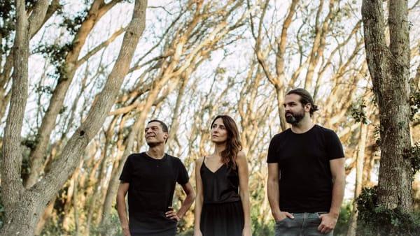 """Music from the trees: album di debutto per il progetto """"Plants dub"""""""