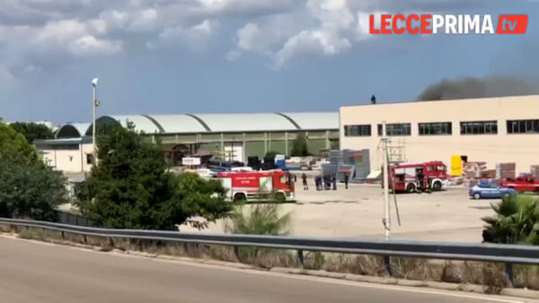 Video | Divampa l'incendio sul capannone, intervengono i vigili del fuoco