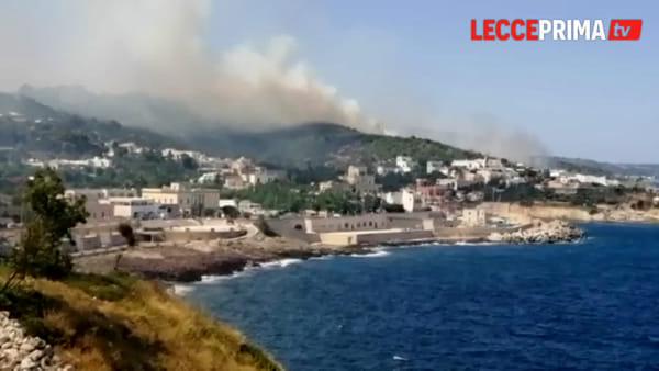 Video | Incendio sulla litoranea di Tricase, lanci d'acqua con due Canadair