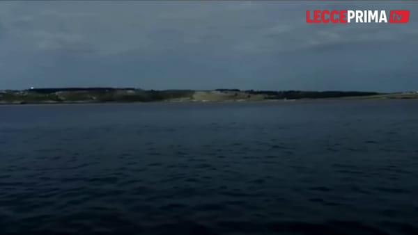 Video | Dopo le cure le tartarughe Ludovica e Mattia tornano a nuotare in mare