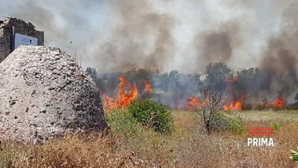 Video | Dall'ansia per le fiamme all'angoscia della scoperta dei resti umani
