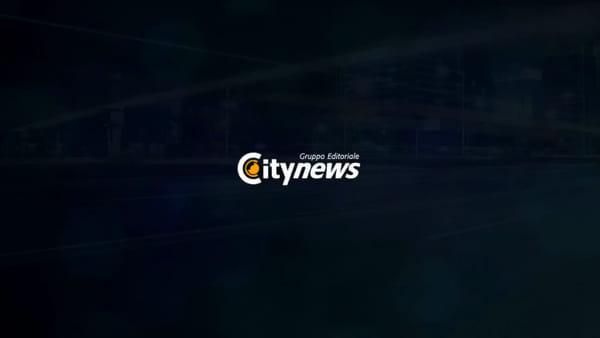 Video | I cinofili dei vigili del fuoco di Lecce in ricerca fra le macerie di Durazzo