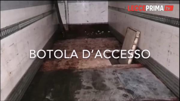 Video | Ecco come ha agito la banda che ha assaltato il furgone della Cosmopol